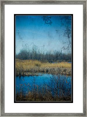 Pond In The Field Framed Print by Michel Filion