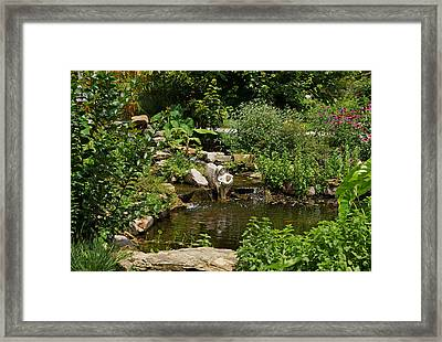 Pond In The Garden Framed Print