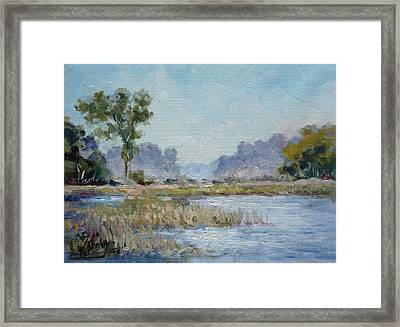 Pond In The Woods 1 Framed Print