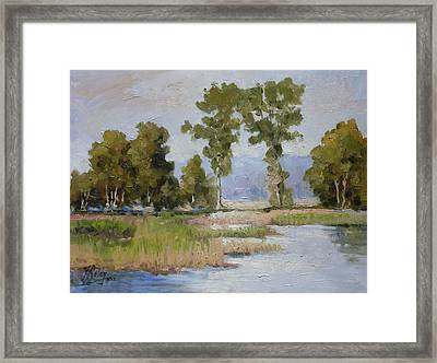 Pond In The Woods 2 Framed Print