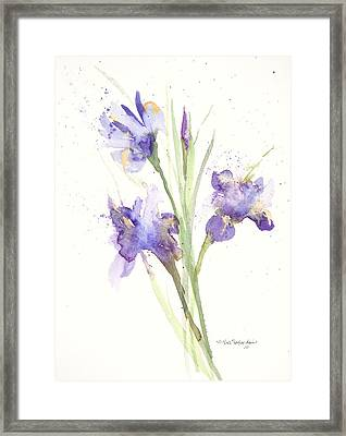 Framed Print featuring the painting Pond Iris by Sandra Strohschein