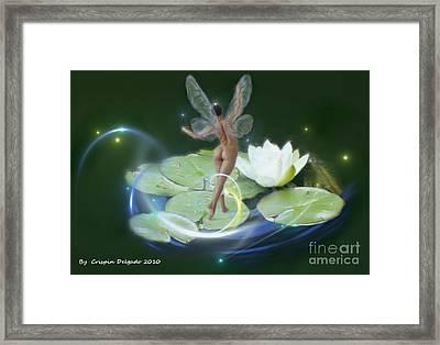 Pond Lilies Framed Print by Crispin  Delgado