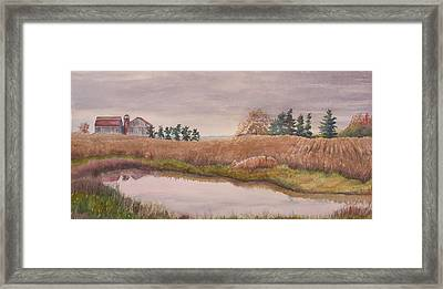 Pond Magic Framed Print by Debbie Homewood