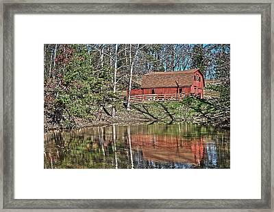 Pond Overlook Framed Print