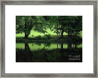 Pond Reflect Framed Print by Karol Livote