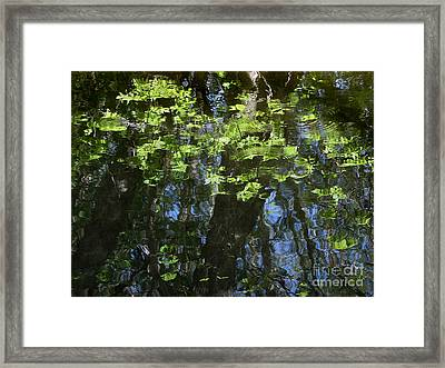 Pond Reflection 1 Framed Print