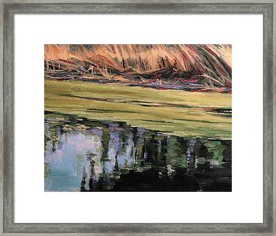 Pond Scum-heather Farms Walnut Creek Framed Print