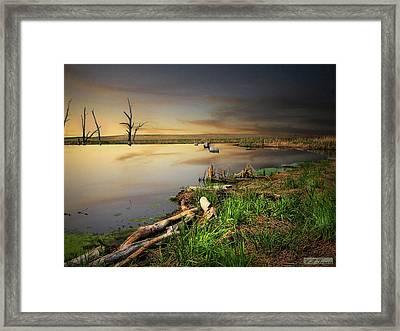 Pond Shore Framed Print