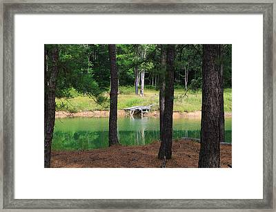 Pond Side Dock Framed Print