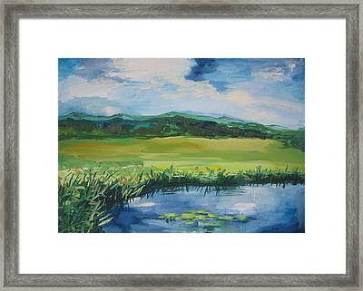 Pond Valley Framed Print by Min Wang