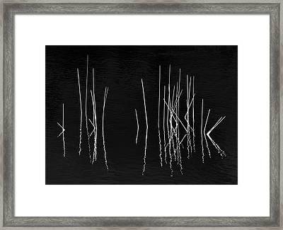 Pond Zen Framed Print