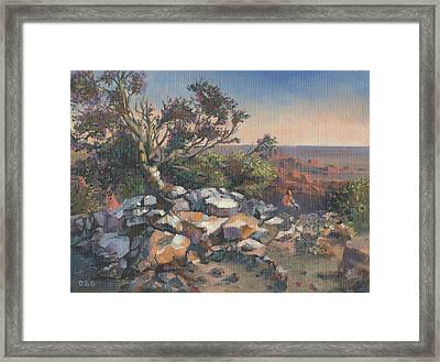 Pondering By The Canyon Framed Print