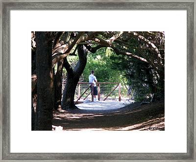 Pondering Framed Print by Dennis Velco