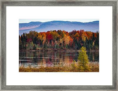 Pondicherry Fall Foliage Reflection Framed Print