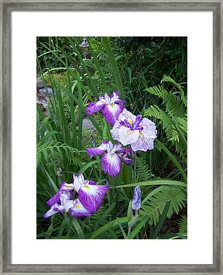 Framed Print featuring the photograph Pond's Edge by Sandy Collier
