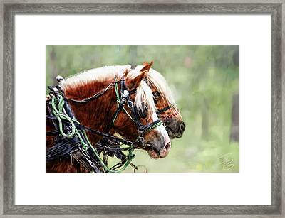 Ponies In Harness Framed Print