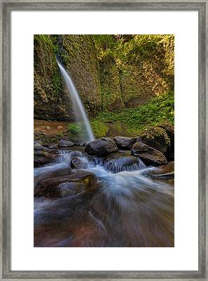 Ponytail Falls Framed Print by David Gn