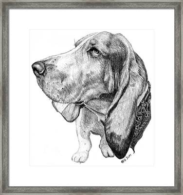 Framed Print featuring the drawing Pooch by Mike Ivey