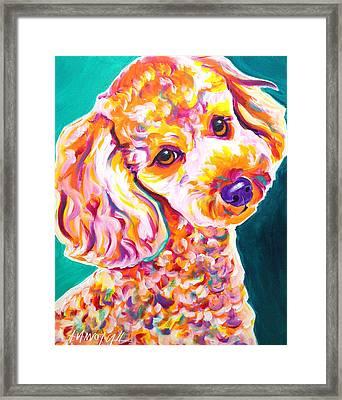 Poodle - Curly Framed Print