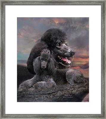Poodle Rock Framed Print by Carol Cavalaris