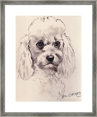 Poodlepup Framed Print by Val Stokes