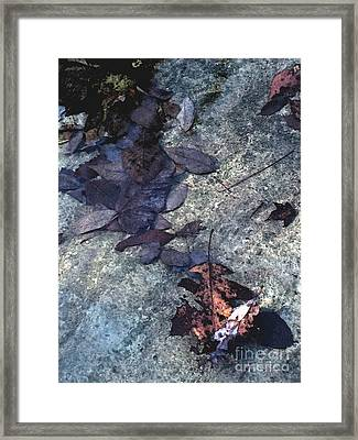 Pool At Richland Creek Framed Print by Steve Grisham