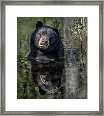 Pool Break Framed Print
