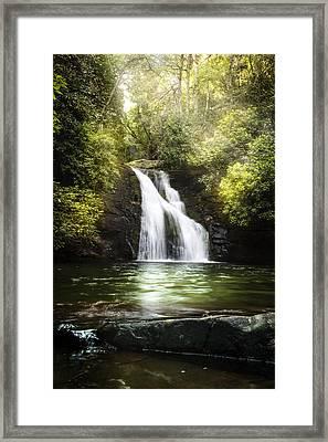 Pool Of Light Framed Print by Debra and Dave Vanderlaan