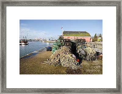 Poole Framed Print by Nichola Denny
