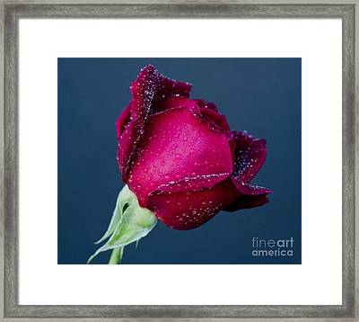 Pour Some Sugar On Me Framed Print by Nick  Boren