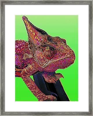 Pop Art Chameleon Framed Print by L S Keely