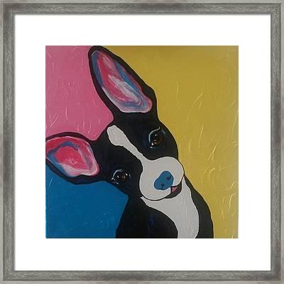 Pop Art Chihuahua Series Framed Print by Cindi Roberts