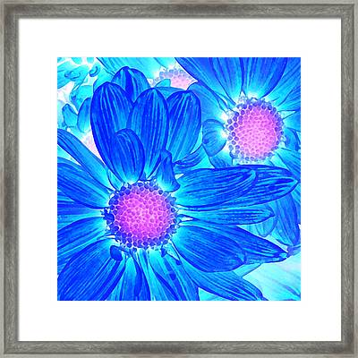 Pop Art Daisies 6 Framed Print