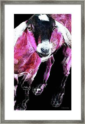 Pop Art Goat - Pink - Sharon Cummings Framed Print by Sharon Cummings