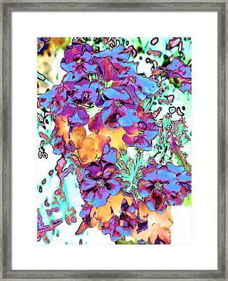 Pop Art Pansies Framed Print by Marianne Dow