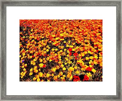 Pop-art Plants Framed Print by Nik Watt