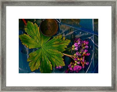 Popart With Fantasy Flowers Framed Print