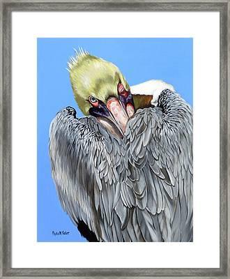 Popeye The Pelican Framed Print