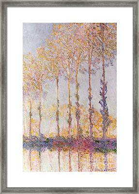 Poplars On The Banks Of The Epte Framed Print by Claude Monet