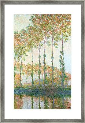 Poplars On The Banks Of The Epte In Autumn Framed Print by Claude Monet