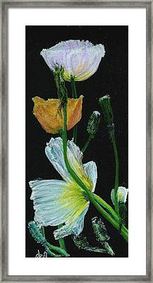 Poppies 1 Framed Print