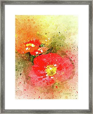 Poppies 5 S Framed Print