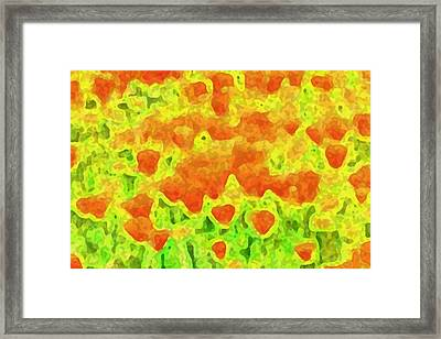 Poppies Adjusted Framed Print by Ben Freeman
