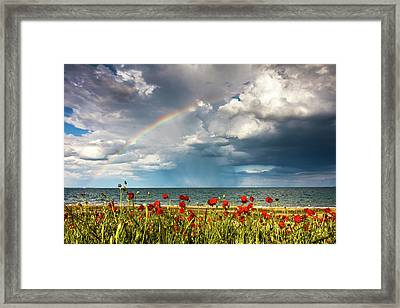 Poppies And Rainbow By The Sea Framed Print