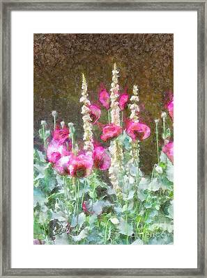 Poppies And Verbascum 2 Framed Print by Shirley Stalter