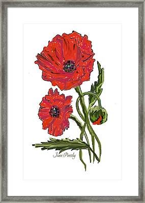 poppies by June Pressly Framed Print by June Pressly