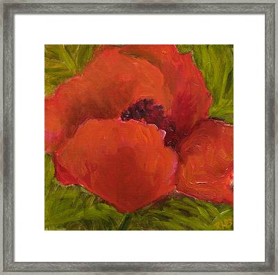 Poppies Diptych A Framed Print by Rita Bentley