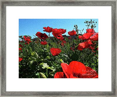 Poppies. Framed Print by Don Pedro De Gracia