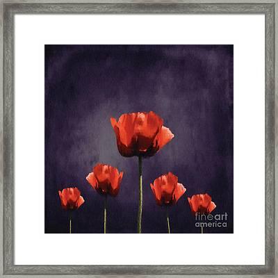 Poppies Fun 01b Framed Print
