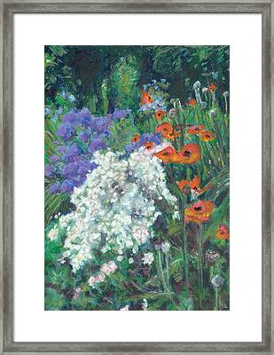 Poppies In June Garden Framed Print by Judy Adamson